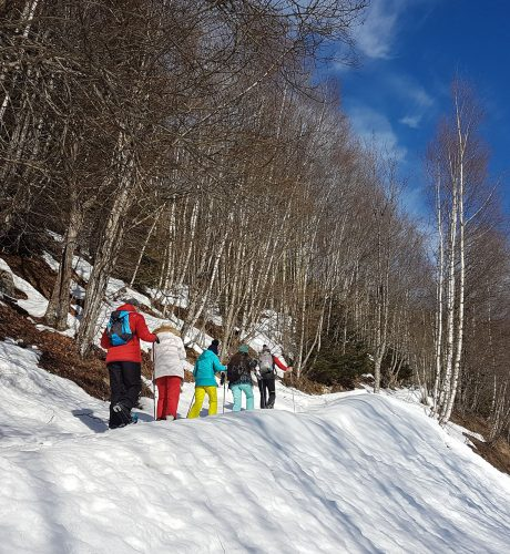 Départ - Randonnée raquette hiver au Parc de Merlet