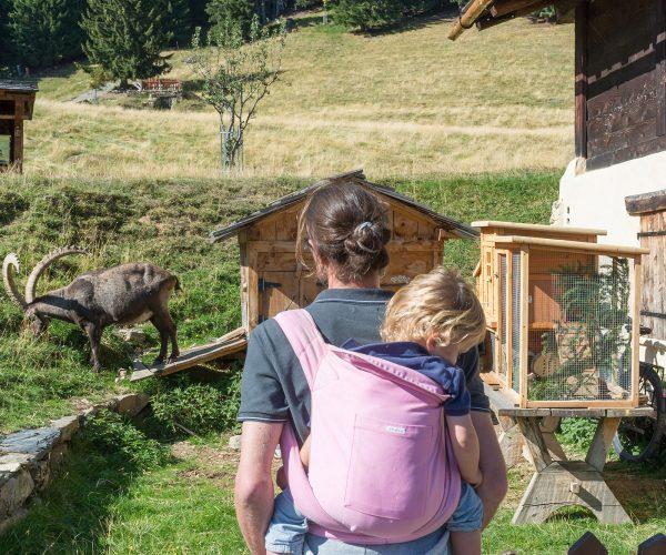 Visiter le parc de Merlet en porte bébé